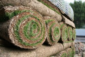 Rolls of Turf in Farnham Common